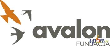 Darmowa rehabilitacja online z Fundacją Avalon!
