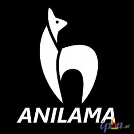 Imprezy plenerowe - Anilama